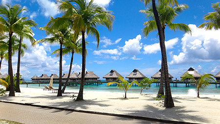 Hilton Bora Bora's Over Water Bungalows