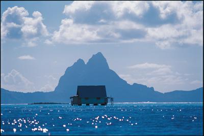 Tahiti pearl farm