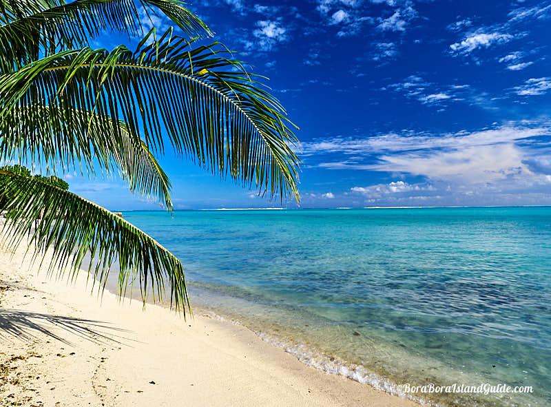 Free Things To Do In Bora Bora