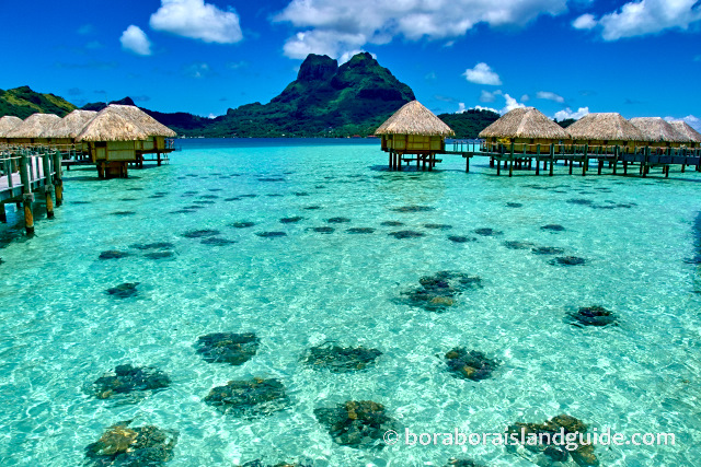 Bora Bora's crystal clear lagoon